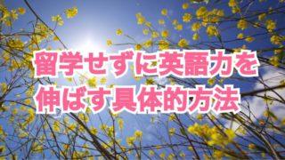 海外留学せずに、日本国内で英語力をかなりいい感じにまで持ってゆく具体的方法