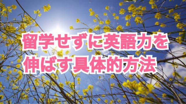 写真 2016-04-26 16 42 20