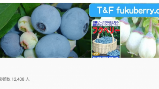 家庭菜園に興味のある人は今すぐチェック!福田俊さんのYouTubeチャンネルがとにかくスゴい!