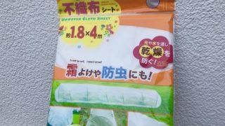 【100円ショップ家庭菜園】ダイソーの不織布が安いのに超優秀!ベタ掛け、トンネルに大活躍しています